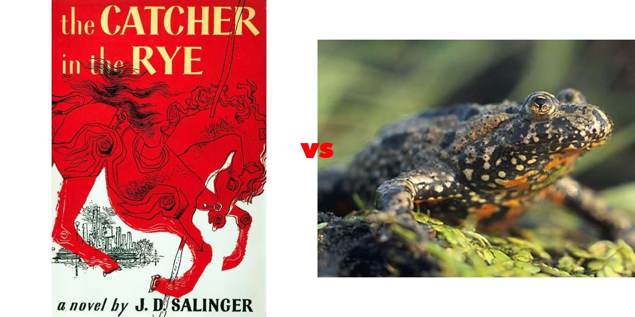 catcher in the rye vs grapes Alienation in the grapes of wrath essay free college essay alienation and it's relevance to catcher in the rye and the grapes of wrath.
